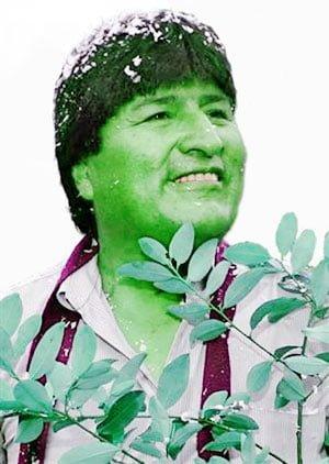 Hoe groen is Evo?