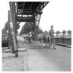 Jaarlijkse koeientocht in het rivierengebied van Nijmegen, brug van de oude schutsluis Maas-Waalkanaal bij Heumen - beeldbank rijkswaterstaat