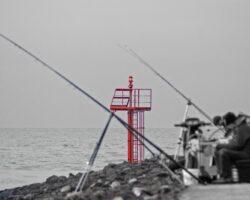 "Foto7daagse 7 maart 2014: ""EEN KLEUR"""